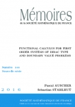 Functional calculus for first order systems of Dirac type and boundary value problems